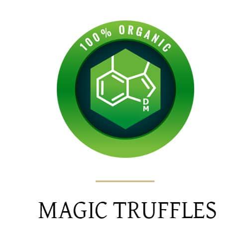 truffes magiques catégorie pic